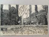 Buziaș 1904 - Lacul Sf. Anton