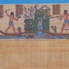 EGIPT - PLIC NECIRCULAT IMITATIE PAPIRUS CU O POZA, PESCARI ADUCIND CAPTURA.