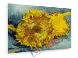Tablou pe panza (canvas) - Vincent Van Gogh - Sunflowers - 1887