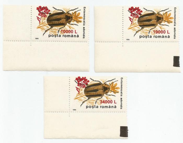 """*România, LP 1516/2000, Insecte II 1996 - supratipar """"floare de muştar"""", MNH"""