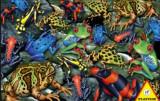 Cumpara ieftin Puzzle Piatnik - 1000 de piese - Broaste