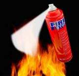 Spray extinctor auto valabil 5 ani
