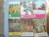 LOT 34 REVISTE APICULTURA IN ROMANIA 1986-1989