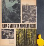 Flora si vegetatia muntilor Bucegi Al. Beldie