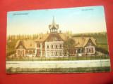 Ilustrata Sighetu Marmatiei - Vila Groedl 1917 ,color
