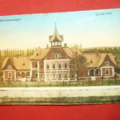 Ilustrata Sighetu Marmatiei - Vila Groedl 1917 ,color, Necirculata, Printata