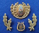 Insigna Militara Ofiter FANFARA - Coifura insemn cascheta SEMN DE ARMA RSR