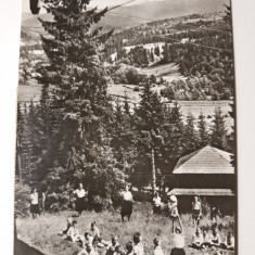 COLIBITA - TABARA DE PIONIERI SI SCOLARI - ANUL 1965