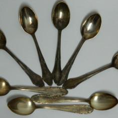 Lot lingurite argintate