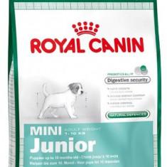 Cumpara ieftin Hrana uscata pentru caini, Royal Pet Mini Junior, 4 Kg