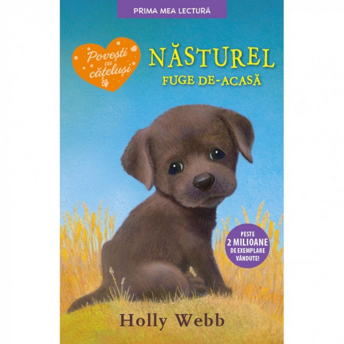 Nasturel fuge de-acasa - Holly Webb