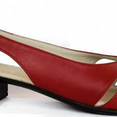 Pantofi dama decupati cu toc jos Ninna Art 227