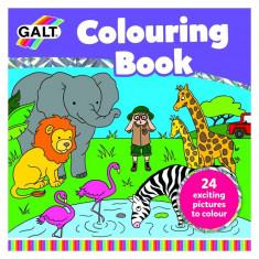Marea carte de colorat Galt, 24 de imagini haioase, dezvolta creativitatea