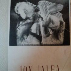 ION JALEA-MARIN MIHALACHE