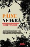 Paine neagra/Emili Teixidor