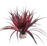Plante artificiale acvariu, SYDECO AMAZONIA, 22 cm, 1 buc, 349617