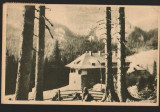 CPIB 15540 CARTE POSTALA - MUNTII BUCEGI, CABANA PESTERA, RPR, 1954