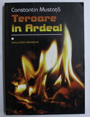 Teroare in Ardeal vol. 1 / Constantin Mustata foto