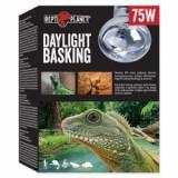 Bec REPTI PLANET Daylight Basking Spot 75W