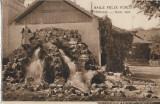 Carte postala Izvor cald Baile Felix austro-ungara