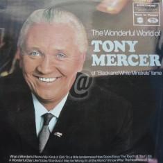 The Wonderful World of Tony Mercer (Vinil)