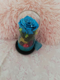 Vând trandafir criogenat în cupola