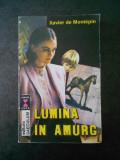 XAVIER DE MONTEPIN - LUMINA IN AMURG
