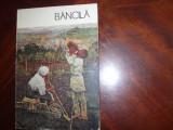 OCTAV  BANCILA   ( album pictura 1987 )  *