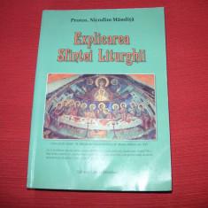 NICODIM MANDITA - EXPLICAREA SFINTEI LITURGHII