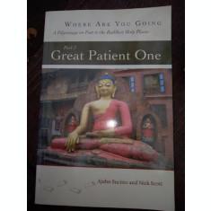 Great Patient One Dhamma Books - Ajahn Sucitto, Nick Scott