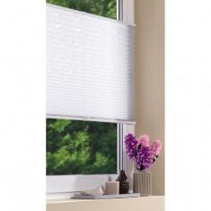 Rulou plisat pentru ferestre Meradiso 60x130 cm