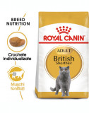 ROYAL CANIN British Shorthair Adult 20 kg (2 x 10 kg) hrană uscată pentru pisici adulte British Shorthair