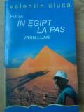 FUGA IN EGIPT, LA PAS PRIN LUME... - VALENTIN CIUCA