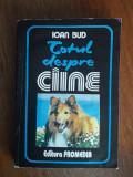 Totul despre caine - Ioan Bud / R1F