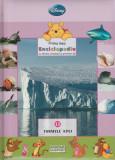 Formele apei – colectia Prima mea enciclopedie cu Winnie Ursuletul si prietenii, Disney
