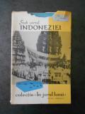 IN JURUL LUMII. SUB CERUL INDONEZIEI