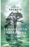 Tamaduirea interioara - Gabriel Socaciu