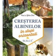 Creşterea albinelor în stupi orizontali