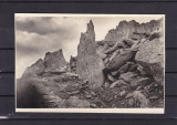 S.K.V. CLEOPATRA  SI NEGOIUL MIC   FOTO. E. FISCHER  SIBIU, Necirculata, Fotografie