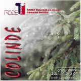 CD Grupul coral Da_Capo Dirijor: Claudia Gherga – Colinde, original