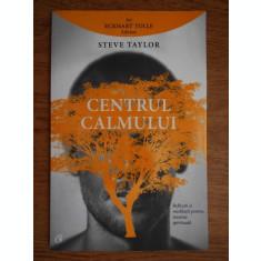 Steve Taylor - Centrul calmului