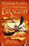 How to Train Your Dragon: How to Twist a Dragon's Tale Book 5