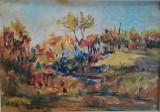 Cumpara ieftin Tablou Peisaj de toamna. tehnica mixta , 23x32 cm inramat cu sticla, Peisaje, Acuarela, Realism