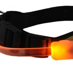 Zgarda pentru Caini Reglabila cu Lumini LED, Marime S, Culoare Galben