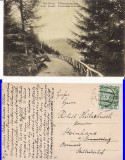 Vatra Dornei (Bucovina, Suceava)- Promenada Ullmann, Circulata, Printata