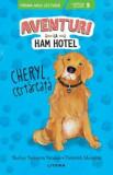 Aventuri la Ham Hotel. Cheryl, certareata. Nivelul 5/Shelley Swanson Sateren, Deborah Melmon