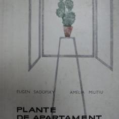PLANTE DE APARTAMENT SI DECORATIUNI FLORALE- EUGEN SADOFSKY SI AMELIA MILITIU