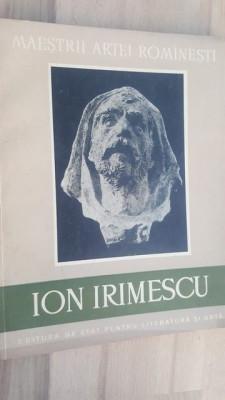 Ion Irimescu- Marin Mihalache foto