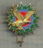 Y 1124 INSIGNA - MILITARA - AVIATIE - DRAGO - PARIS -FRANTA-PENTRU COLECTIONARI