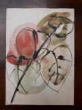 30. Plante, acuarela veche pictura